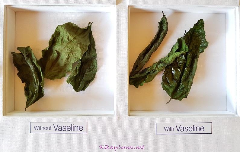 Heal with Vaseline